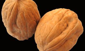Хитрости для длительного хранения грецких орехов как в скорлупе, так и очищенных: советы