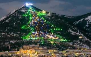 Топ 13 самых дорогих новогодних елок в разных странах: фото, описание