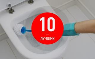 ТОП-10 лучших и эффективных средств для чистки унитаза