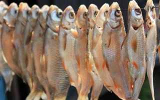 Как засушить рыбу в домашних условиях весной, летом и зимой: простые способы