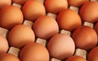 Что будет, если кушать сырые яйца каждый день в течение месяца