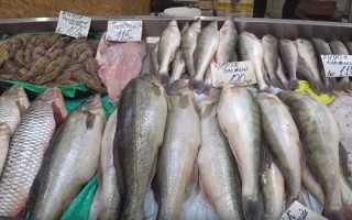 Как хранить соленую рыбу: нужно ли держать ее в холодильнике, можно ли замораживать и сроки годности продукта