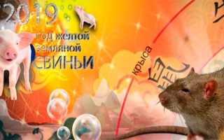 Поздравления с наступающим Новым годом 2020 Свиньи, красивые