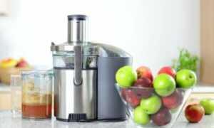 Соковыжималки для яблок большой производительности: лучшие модели, получение промышленных объемов сока