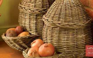 Как хранить лук репчатый в домашних условиях на зиму, чтобы не высох