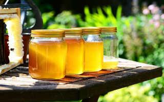 Как проверить мёд натуральный или нет в домашних условиях йодом, водой, уксусом