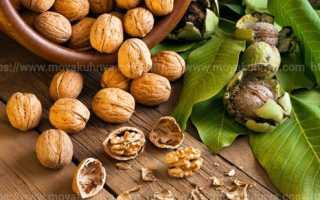 Как хранить грецкие орехи в домашних условиях: очищенные и в скорлупе
