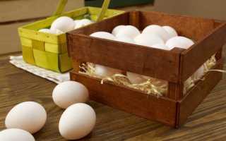 Как хранить куриные яйца в домашних условиях