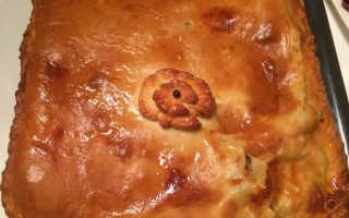 Пирог с мясом в духовке, пошаговый рецепт с фото из дрожжевого теста