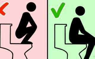 Причины, по которым нельзя застилать туалетной бумагой сиденье унитаза в общественном туалете