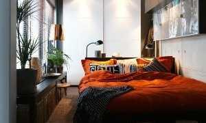 Комнатные растения для спальни: какие лучше всего (фото)