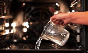 Какая лучше очистка духовки, какую выбрать, типы, системы и виды очистки