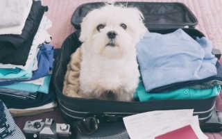 Как компактно сложить вещи в чемодан: основные принципы укладки вещей